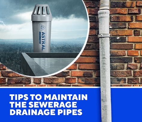 Tips To Maintain The Sewerage Drainage Pipes